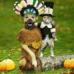Funny Thanksgiving Jokes - Humor Healing Podcast #232